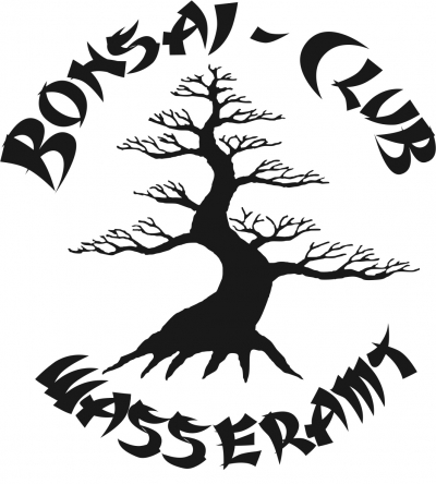 Bonsai Club Wasseramt